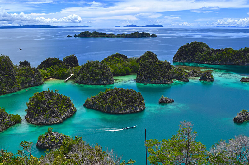 Williams World Tour – Raja Ampat Islands, Indonesia.